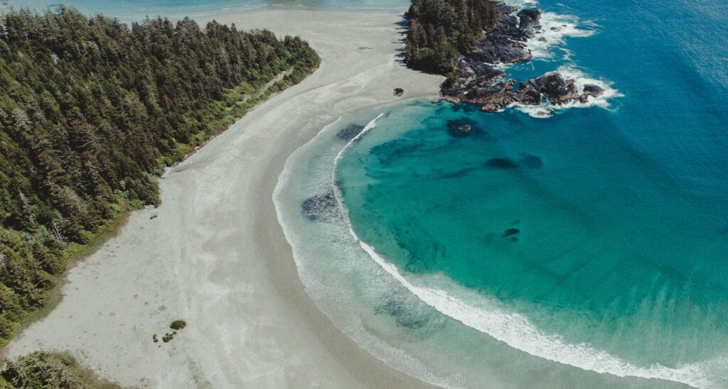 best things to do in tofino