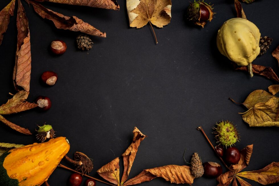 Happy Thanksgiving Images 2020, Wallpapers & Backgrounds ...