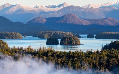 5 Amazing Things to do in Tofino