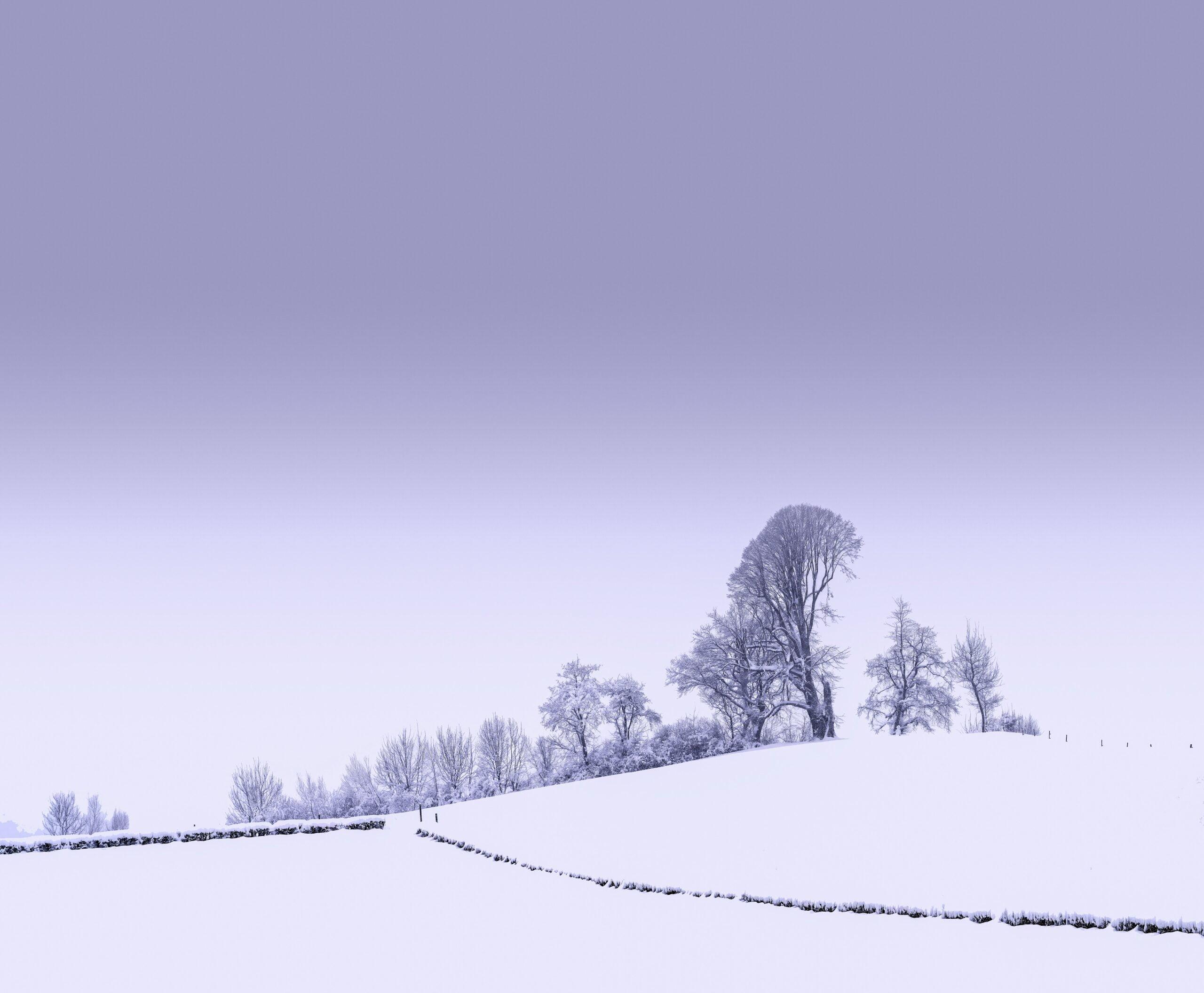 Landscape wallpapers